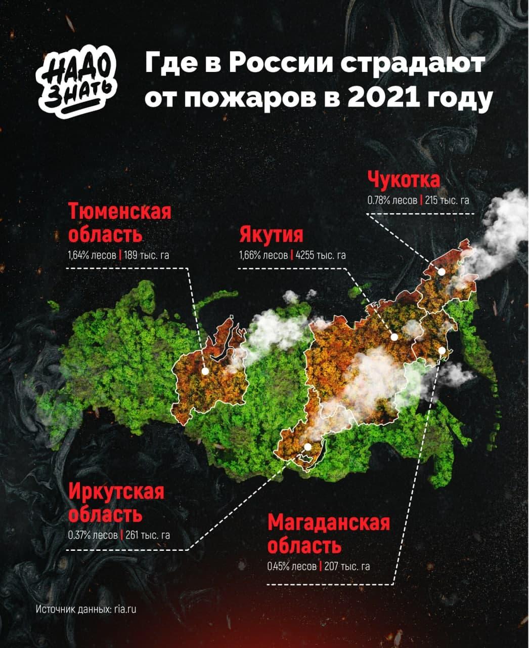 Где в России страдают от пожаров в 2021 году